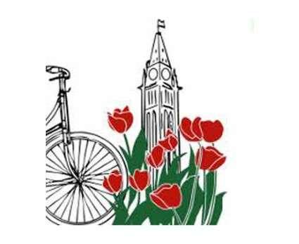 City of Ottawa Cycling Safety